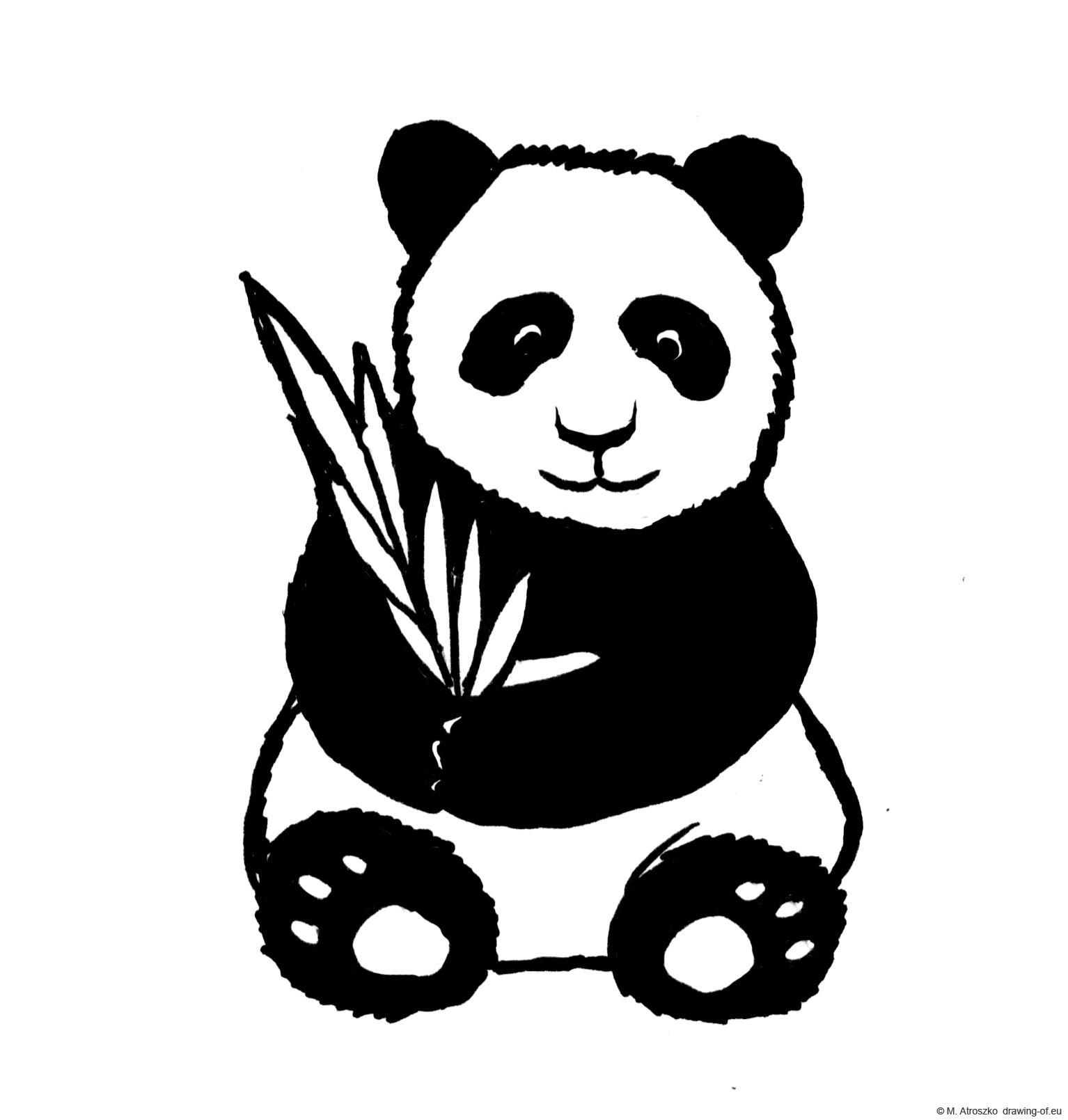 giant panda bear - drawing