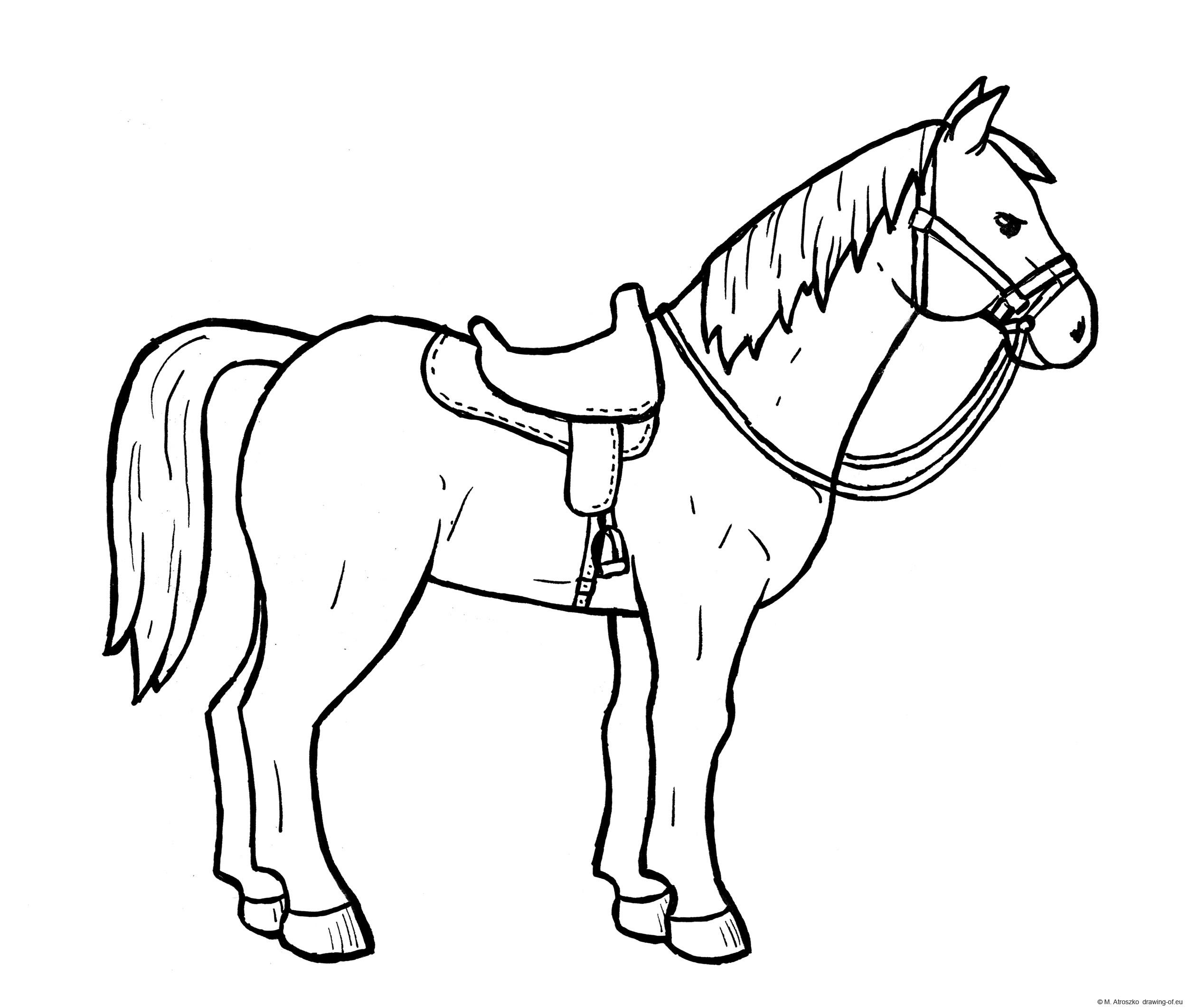 Seddled up horse draw