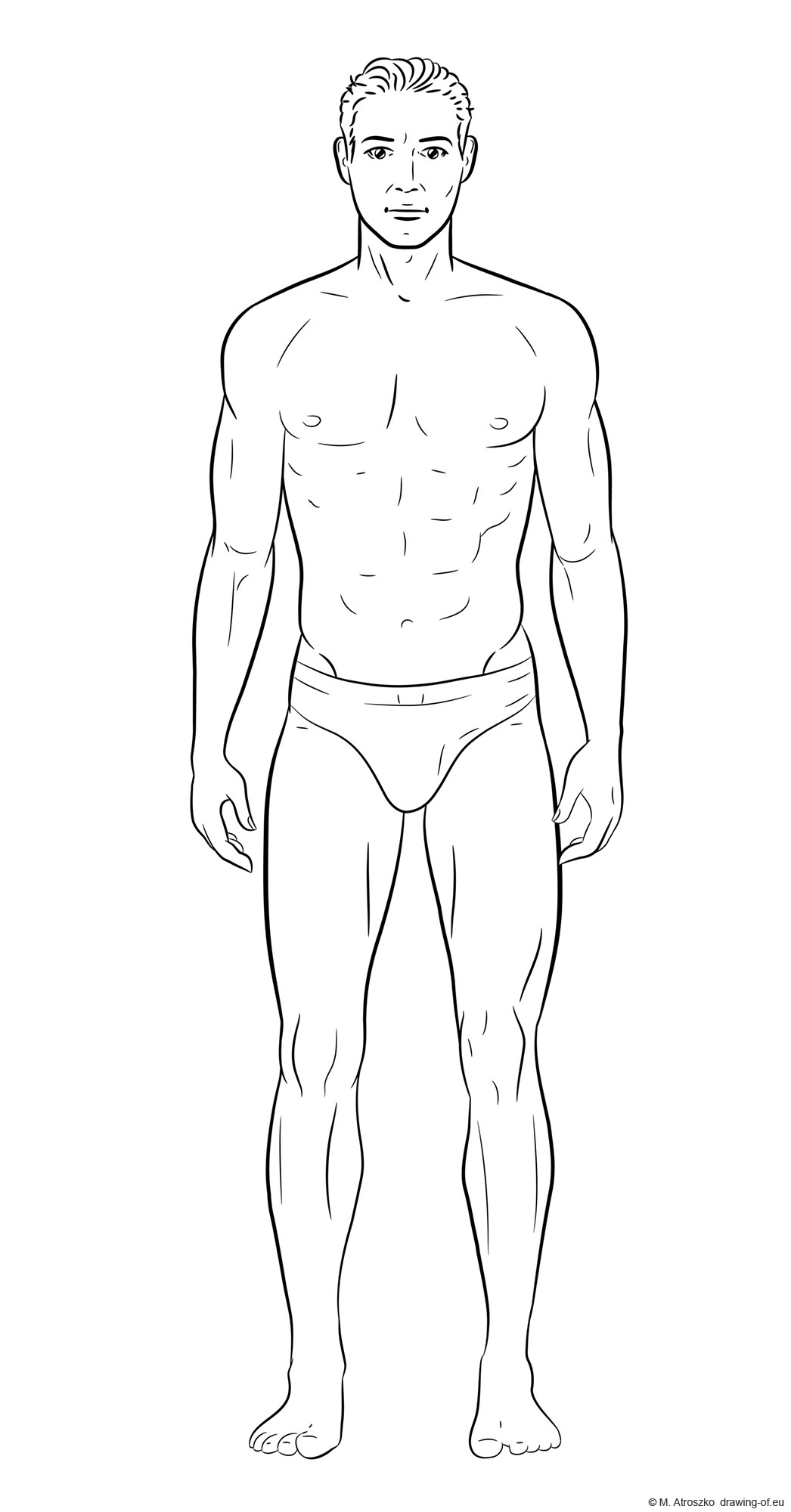 Drawing of male body