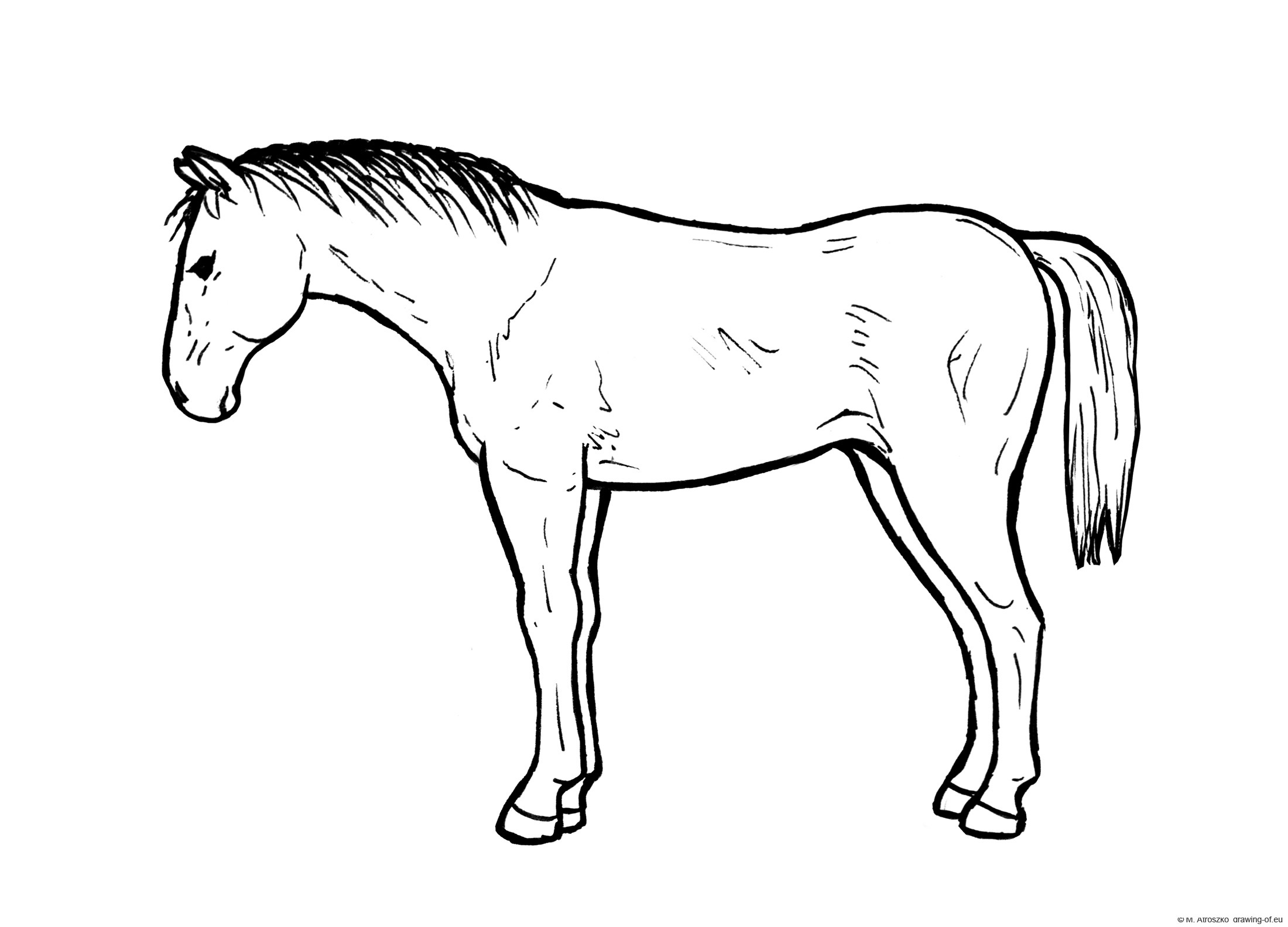 Standing horse draw